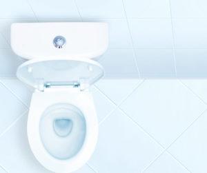 Toaleta z podniesioną deską.
